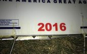 Poll worker injured after picking up Donald Trump campaign sign with blades attached to it.