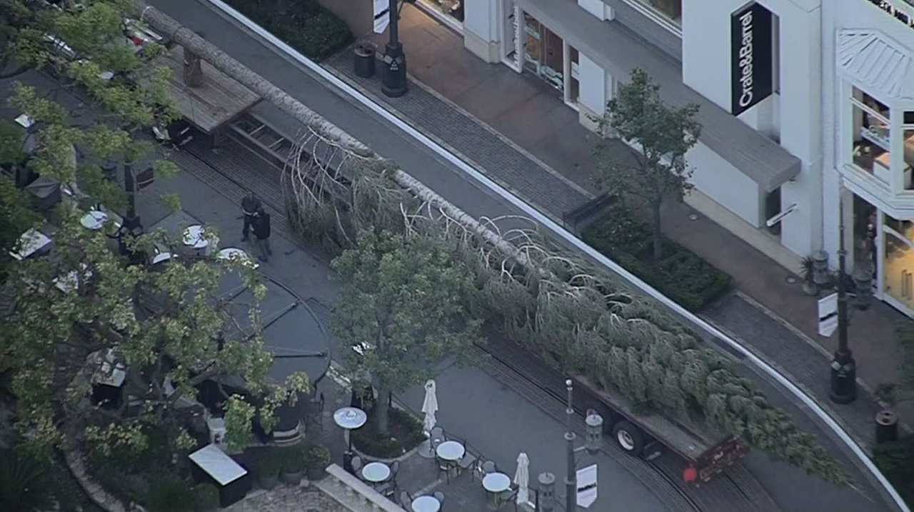 A 100-foot Christmas tree arrived at the Grove in Los Angeles on Tuesday, Oct. 16, 2018.