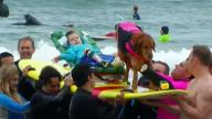 Children With Disabilities Go Surfing With Special Dog