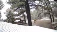 Snow-Laguna-Mtn-Lodge-011519