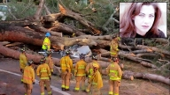 Memorial for Musician Crushed by Tree