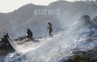 775190389MT012_Brush_Fire_B
