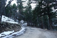 Snowy Trail in Big Bear