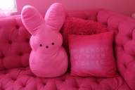 181128-pink-lady-04