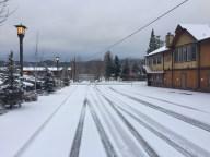 Fresh Coat of Snow in Big Bear