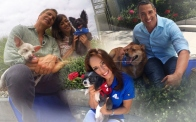 Clear the Shelters 2016 a Big Success