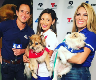 NBC4 and Telemundo 52 Kicks Off Clear the Shelters on August 18