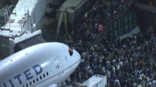 LAX Terminals Cleared After False Report of Gunfire