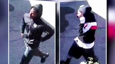 Suspects Sought in North Hills Home Burglaries