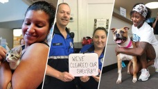 'Instant Love': Shelters Cleared as Pets Find Forever Homes
