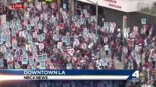 Janitors Protest Wages, Working Conditions in DTLA