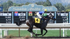Another Horse Dies at Santa Anita, 34th Since Last December