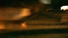 Mountain Lion Kills Mini Horse at Newbury Park Home