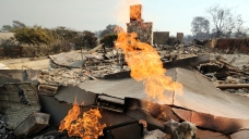 Fire Insurance: What to Do If You've Been Forced to Evacuate