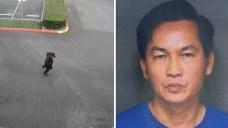 Coworker Arrested in Fatal Cal State Fullerton Stabbing