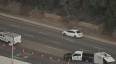 Pedestrian Killed in Crash on PCH in Santa Monica