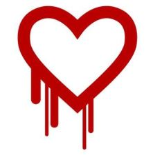 The Dangerous Heartbleed Bug