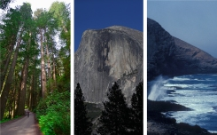 National Park Summer Splendor: What You'll See in California