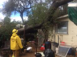 Storm Downs Trees, Prompts Flooding in SoCal
