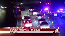 Deadly Hit and Run Shuts Down Freeway