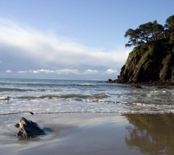 "The ""Dark Side"" of Sea Ranch"