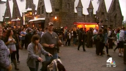 Harry Potter Attraction Opens With Fanfare