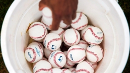 Photos From MLB Spring Training 2015