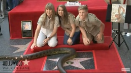 """Crocodile Hunter"" Receives Star on Hollywood Walk of Fame"