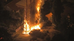Flames Engulf Tree, Three Vehicles in North Hollywood