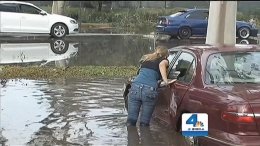Driver Swims Out of Car Trapped in Flash Flood After Damaging