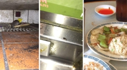Rats and Roaches in SoCal Restaurants: See What the NBC4 I-Team Found