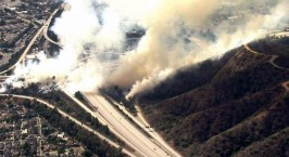 Fire Forces Evacuations in Eagle Rock Area