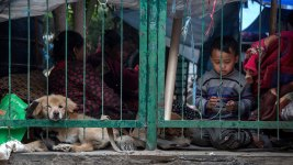 How to Help Victims of Nepal Earthquakes