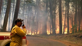Firefighter Dies Battling Wildfire Near Yosemite Nat'l Park