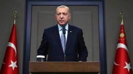 Putin, Erdogan Hold Talks on Fate of Syria Border