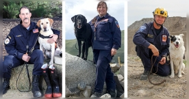 Trained in CA, These Search Dogs Teams Are Ready for Duty