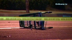 Woman Killed in Santa Ana Hit-and-Run Crash