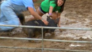 Country Fair Keeps Pig Wrestling Despite Protests
