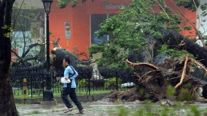 Raw Video: Powerful Typhoon Causes Widespread Damage