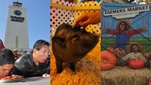 Fall Up at Original Farmers Market's Free Fest