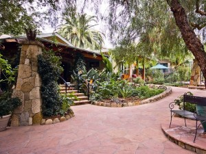 Spring Deals Around Ojai