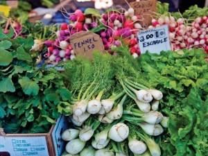 Sustainable Food Fest in Santa Barbara