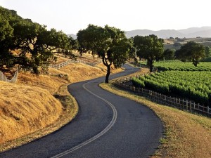 Wine Around in Santa Ynez Valley