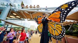 Flutter by NHMLA's LA Nature Fest