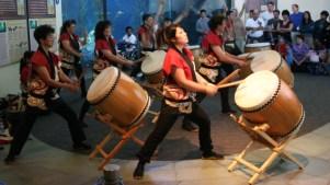 Autumn Fest Brings Music and Joy to the Aquarium