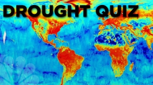 QUIZ: Who Can Save Us From the Drought Now?