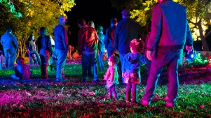 Enchanted: Forest of Light Opens