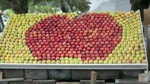 Fall Visits Summer at the Gravenstein Apple Fair
