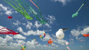 Kite Magic Flutters Above Morro Bay
