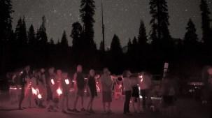 Dark Sky Wonder Among the Sequoias